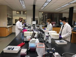 Photo showing students working together in a lab and following pandemic restrictions of masks and distance