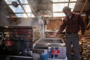 Photo showing a student learning about maple syrup production