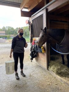person holding a bucket in front of a stable while a horse looks on